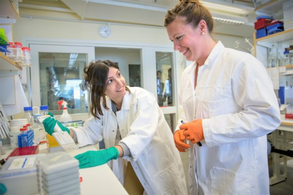 Mahsa Fallah and Lisa Lundberg in the Omnio lab. Photo: Johan Gunséus